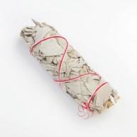 Atado Salvia Blanca Californiana 10 cm